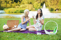 Free Pleasant Afternoon In The Park Stock Images - 45452644