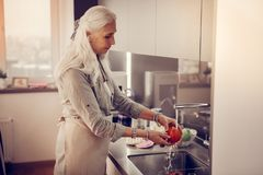 Pleasant aged woman washing a red tomato royalty free stock image