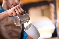 Pleasant barista working in the cafe Royalty Free Stock Images