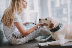 Pleasant beautiful woman resting with her dog at home. Nice attractive young woman expressing love to her dog while using her laptop at home stock image