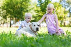Pleasant brother and sister spending a day with a dog royalty free stock images
