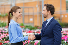 Pleasant businesspeople talking in the greenhouse Stock Photos