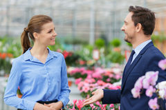 Pleasant businesspeople talking in the greenhouse Royalty Free Stock Photo