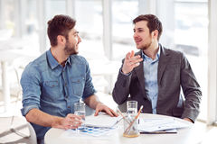 Pleasant colleagues discussing project Stock Image