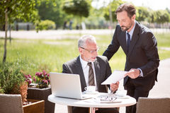 Pleasant colleagues working together Royalty Free Stock Photos