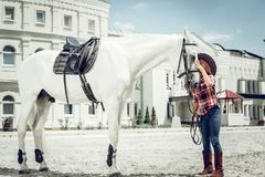 Pleasant cute girl standing near her white horse stock image