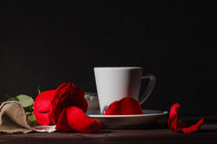 Pleasant dark evening scene with coffee and red rose Royalty Free Stock Image