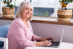 Pleasant elderly lady typing on her laptop Royalty Free Stock Photo