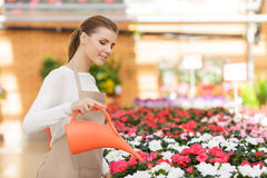 Pleasant florist watering flowers Royalty Free Stock Images