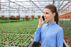 Pleasant greenhouse owner controlling her business. Answer please. Nice confident businesswoman holding mobile phone and making a call while controlling her Royalty Free Stock Photos