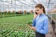Pleasant greenhouse owner controlling her business. Piece of beauty. Pleasant confident businesswoman holding flower pot and having conversation on cell phone Royalty Free Stock Images