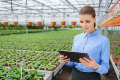 Pleasant greenhouse owner controlling her business. Put everything under control. Pleasant confident charming businesswoman holding tablet and controlling her Royalty Free Stock Photography