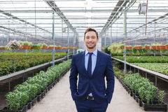 Pleasant greenhouse owner controlling his business Stock Image
