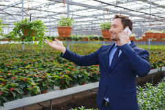 Pleasant greenhouse owner controlling his business Stock Photos