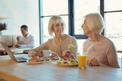 Joyful elderly women talking Royalty Free Stock Photo