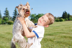 Pleasant little boy holding dog. My best friend. Nice little boy keeping his arms up and holding dog in hands while having great time with it Royalty Free Stock Image
