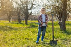 Pleasant little boy standing in the garden Royalty Free Stock Photography