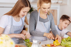 Pleasant loving mother cooking salad with her children Stock Photo