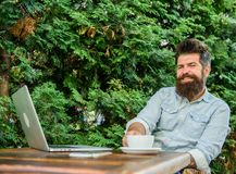 Pleasant moment. Take moment to think. Break to relax. Man bearded hipster make pause for drink coffee and think while. Sit with laptop. Guy drinks coffee stock photography