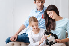 Pleasant optimistic family looking at the cat Royalty Free Stock Image