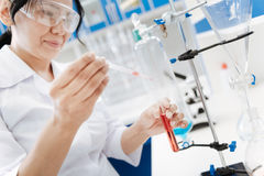 Pleasant professional researcher holding a medicine dropper Stock Images
