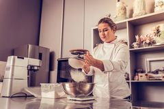 Pleasant skilled woman preparing a tasty cake stock photography