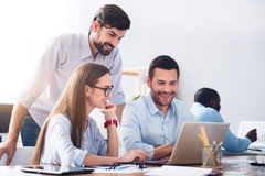 Pleasant smiling colleagues discussing project. Work with positivity. Cheerful delighted smiling colleagues using laptop and working in the office while royalty free stock photo
