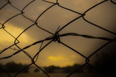 Pleasant sunset fence and clouds stock image