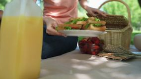 Pleasant woman getting sandwiches from the basket. Help yourself. Nice woman sitting on the blanket and getting sandwiches from the basket while enjoying the stock footage