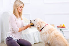 Pleasant woman having fun with a dog. You deserve it. Vivacious pleasant cheerful positive woman holding bone and giving it to her dog while feeding it Royalty Free Stock Photography