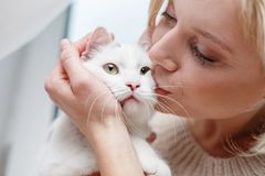 Pleasant woman showing tenderness to domestic pet Stock Photography