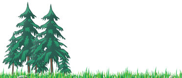 Pleasant Wood. It's the illustration, on a white background, of a pleasant wood, with trees, grass, small rocks Royalty Free Stock Photos