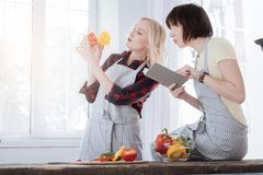 Pleasant young woman reading a recipe. New dish. Pleasant nice young women holding a notebook and reading a recipe while being in the kitchen with her girlfriend Stock Photo