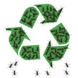 Please recycle Stock Photos