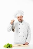 Pleased cook Stock Image