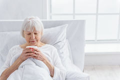 Pleased pensioner delighting cup of tea Royalty Free Stock Image