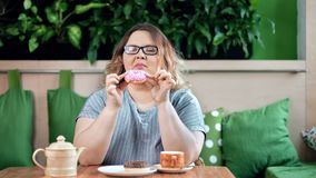 Pleased smiling fat woman enjoying chewing tasty appetizing donut looking at camera. Portrait of chubby happy female biting fresh bakery cake and drinking tea stock footage