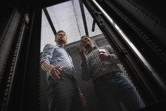 Pleased two colleagues examining server closet. Stable connection. Low angle of charming IT technicians communicating while standing royalty free stock photos