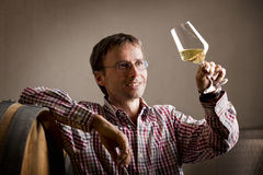 Pleased wijnhandelaar die witte wijn in kelder bekijkt. Stock Foto's
