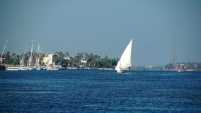 Pleasure boat floats on the waves of the Red Sea on the background of coast and beaches in Egypt. stock video footage