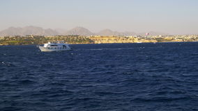 Pleasure Boat Floats on the Waves of the Red Sea on the Background of Coast and Beaches in Egypt stock footage