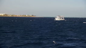 Pleasure Boat Floats on the Waves of the Red Sea on the Background of Coast and Beaches in Egypt stock video footage