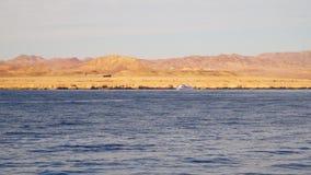 A pleasure boat sails near a deserted shore stock video