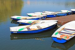 Pleasure boats on the pond with oars near the pier. Walking white with blue boats on the pond with oars near the pier on a clear summer day stock photography