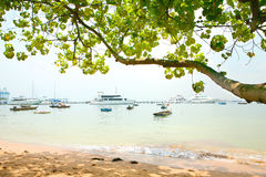 Pleasure cruise boats moored by the beach Stock Image