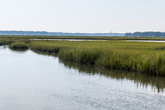Pleasure House Point Marshland in Virginia Beach, Virginia Royalty Free Stock Photos