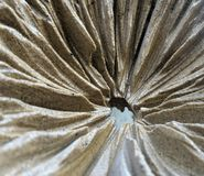 Pleat texture sculpture Stock Photos