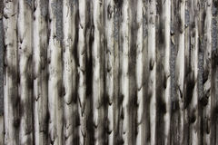 Pleated curtain. A black and white detailed view of texture fabric resembling a pleated curtain or drape Stock Image