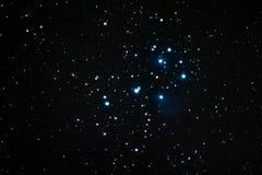Pleiades Royalty-vrije Stock Afbeeldingen