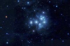 Pleiades i djupt utrymme Arkivfoto